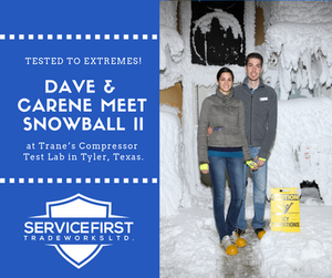 Dave & Carene Meet Snowball II