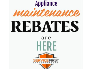 Information Bulletin from Technical Safety BC: Annual servicing for gas appliances and REBATES