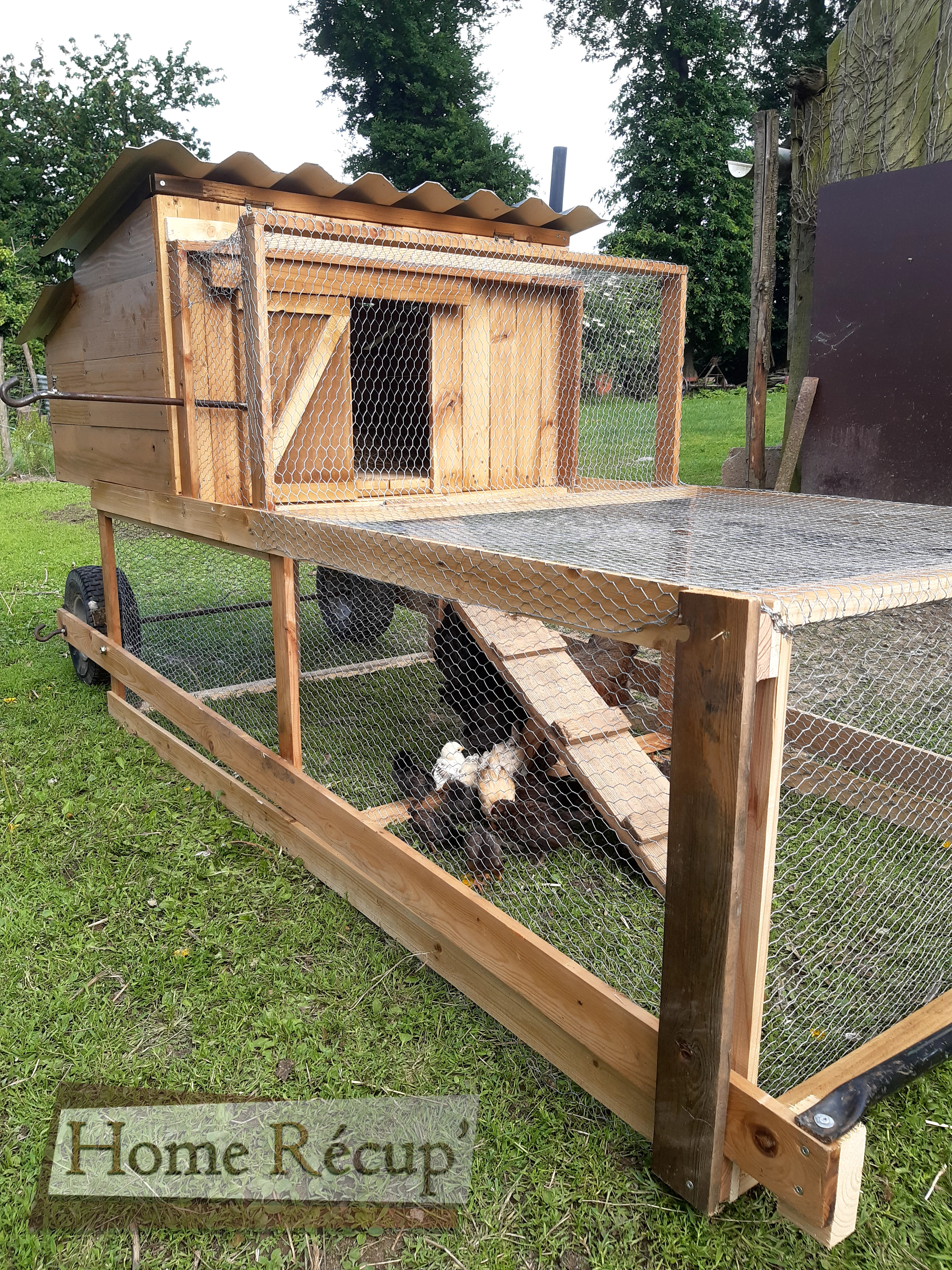 Tracteur à poules (2)