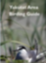 Yakutat_Birding_Guide_Cover.PNG