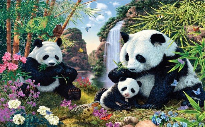 Семейство панд