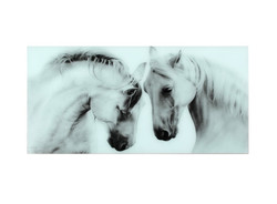 Белые скакуны