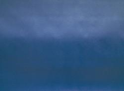 винилискожа синяя