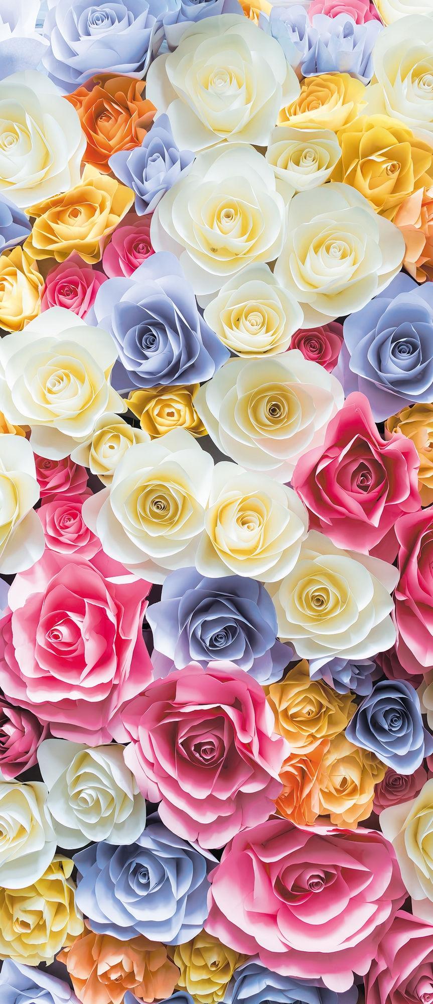 Стена из роз