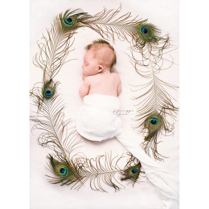 Newborn | Sweet & Simple | Westchester