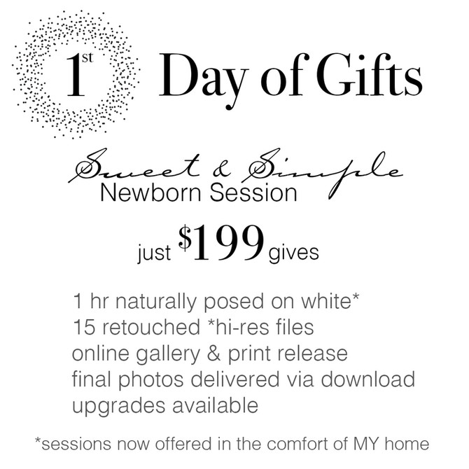 12 Days of Gifts | Instagram Holiday