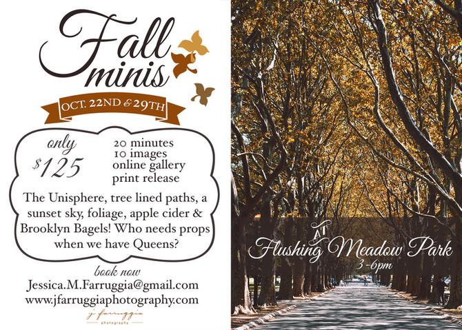 Fall minis | Flushing Meadows Corona Park