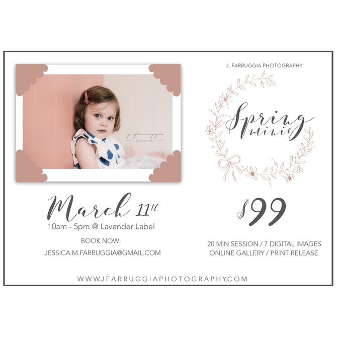 Spring Minis | Lavender Label Shop