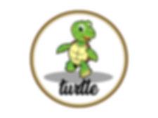 turtle-02-min.jpg