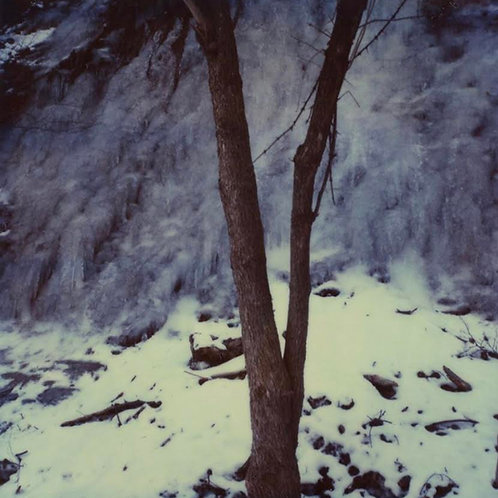 Andrea Haenni -  Winter Polaroid SX-70 Scan, Print auf Papier 30x30cm
