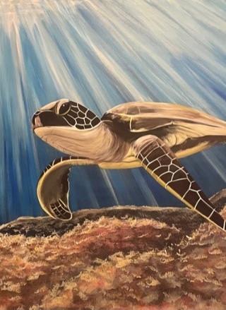 tortoise 2.jpg