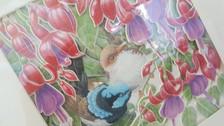 birds in fresias.jpg