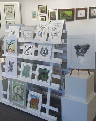 wildlife cards and prints.jpg