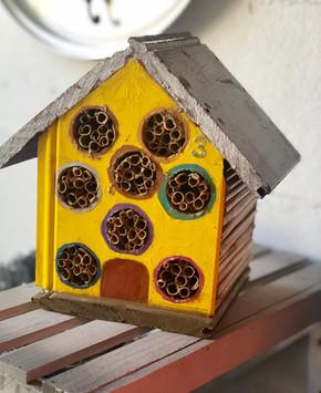bees house.jpg