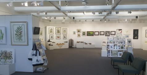 Gallery wide view .jpg