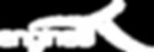 engine8 logo