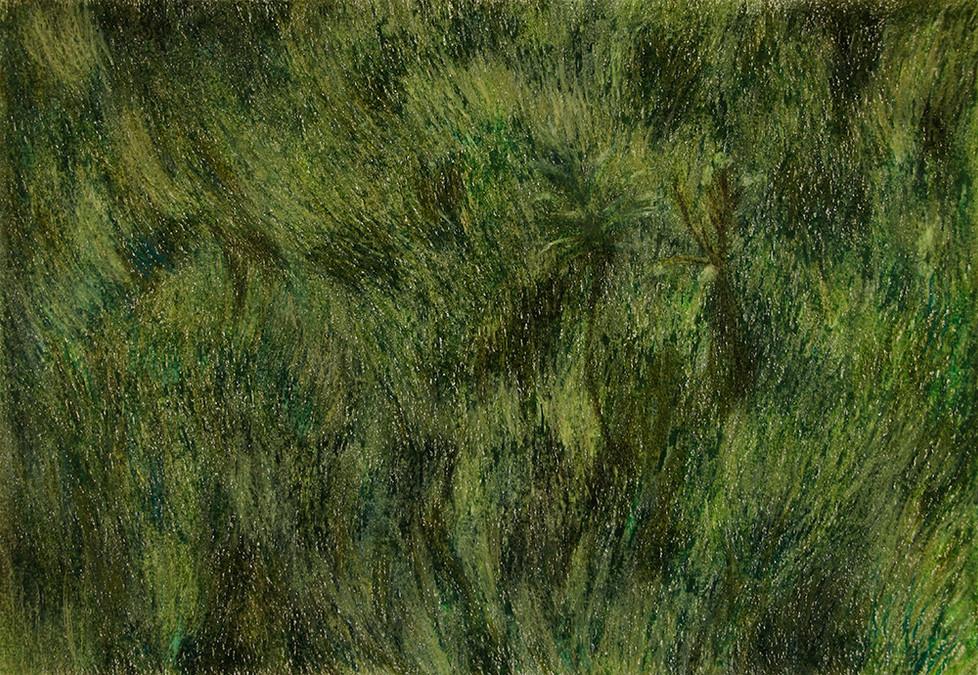 Untitled | Pastel Pencils on Paper | 29x42.5 cm | 2016