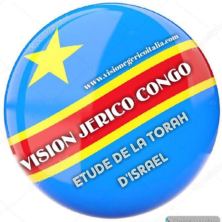 VGI Congo.jpg