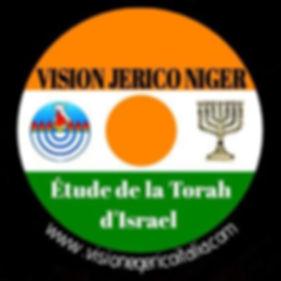 VGI Niger.jpg
