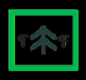 TF-Logo-Transparent1.png