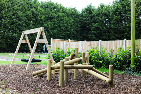 Swings and Climbing Frame