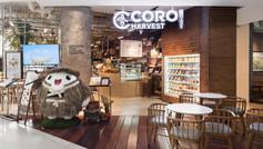 CORO HARVEST