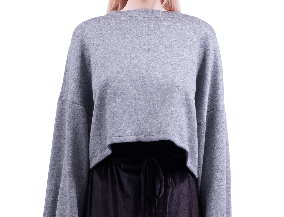 Oversized Cropped Seatshirt