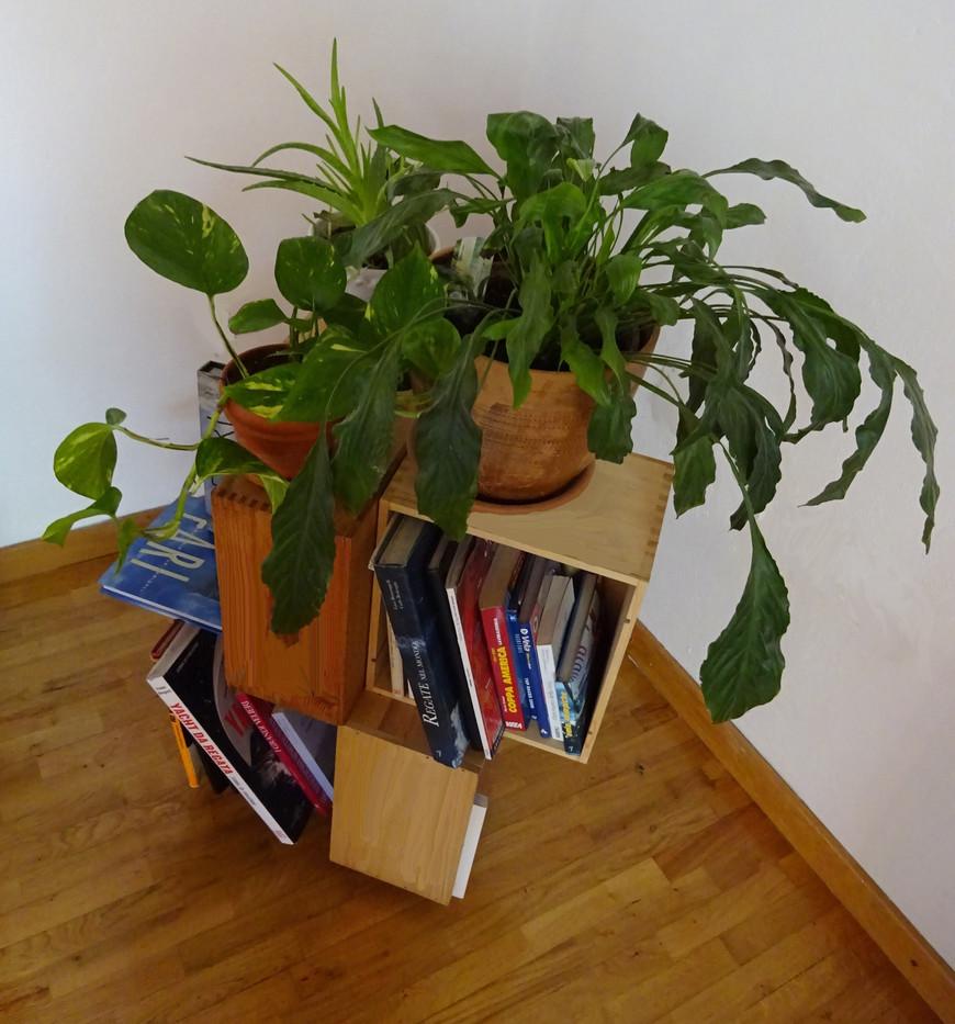 libreria dall'alto
