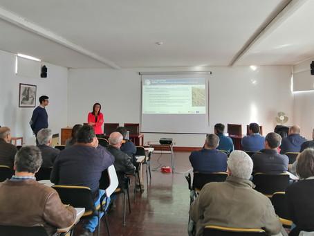 Conclusões do Grupo Focal do Ribatejo e do Sado realizados no 1º trimestre de 2020
