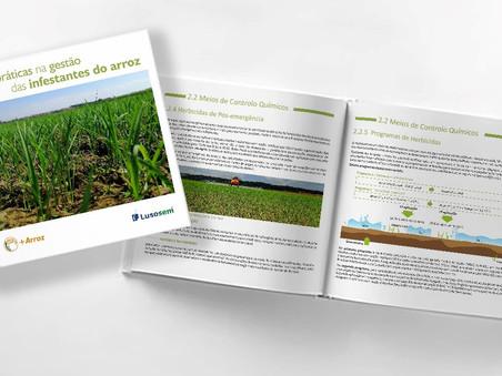 Grupo operacional + ARROZ lança Manual de Boas Práticas na gestão das infestantes do arroz