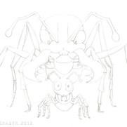 """Bulldog Ants"" - clean pencil sketch"