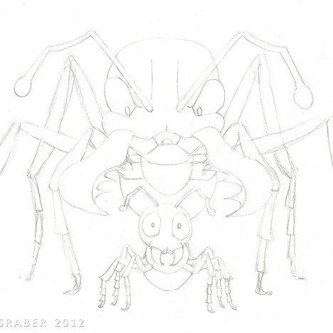 """Bulldog Ants"" - clean pencil sketch"