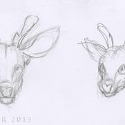 """No Escape"" - deer face concepts"