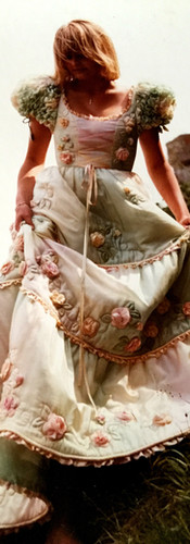 Cindy Gown Roses