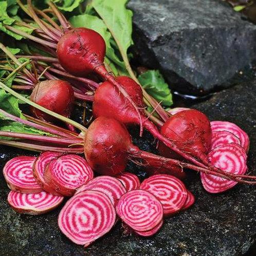 Chioggia Beet Seeds