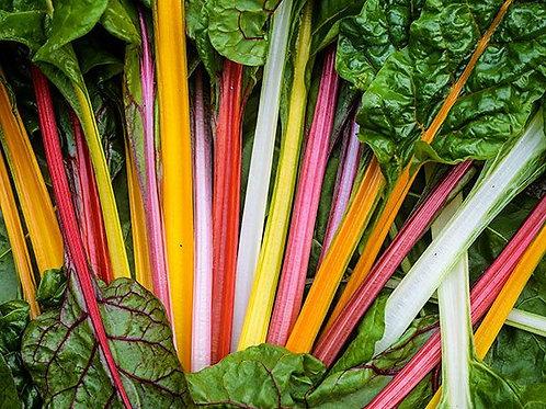 Rainbow Swiss Chard Seeds