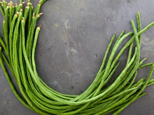 Orient Yard Long Bean