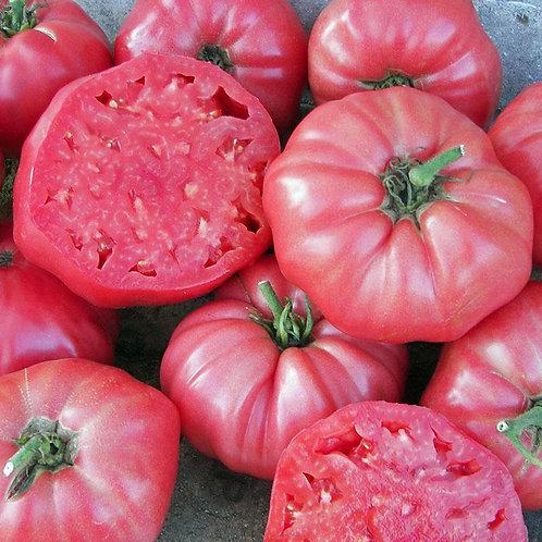 Brandywine Pink Tomato Seeds