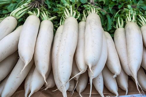 White Icicle Radish Seeds