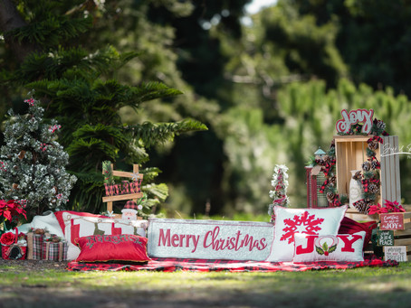 Christmas Photoshoot (mini):  What to expect and receive