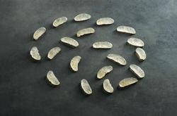 Las Larvas