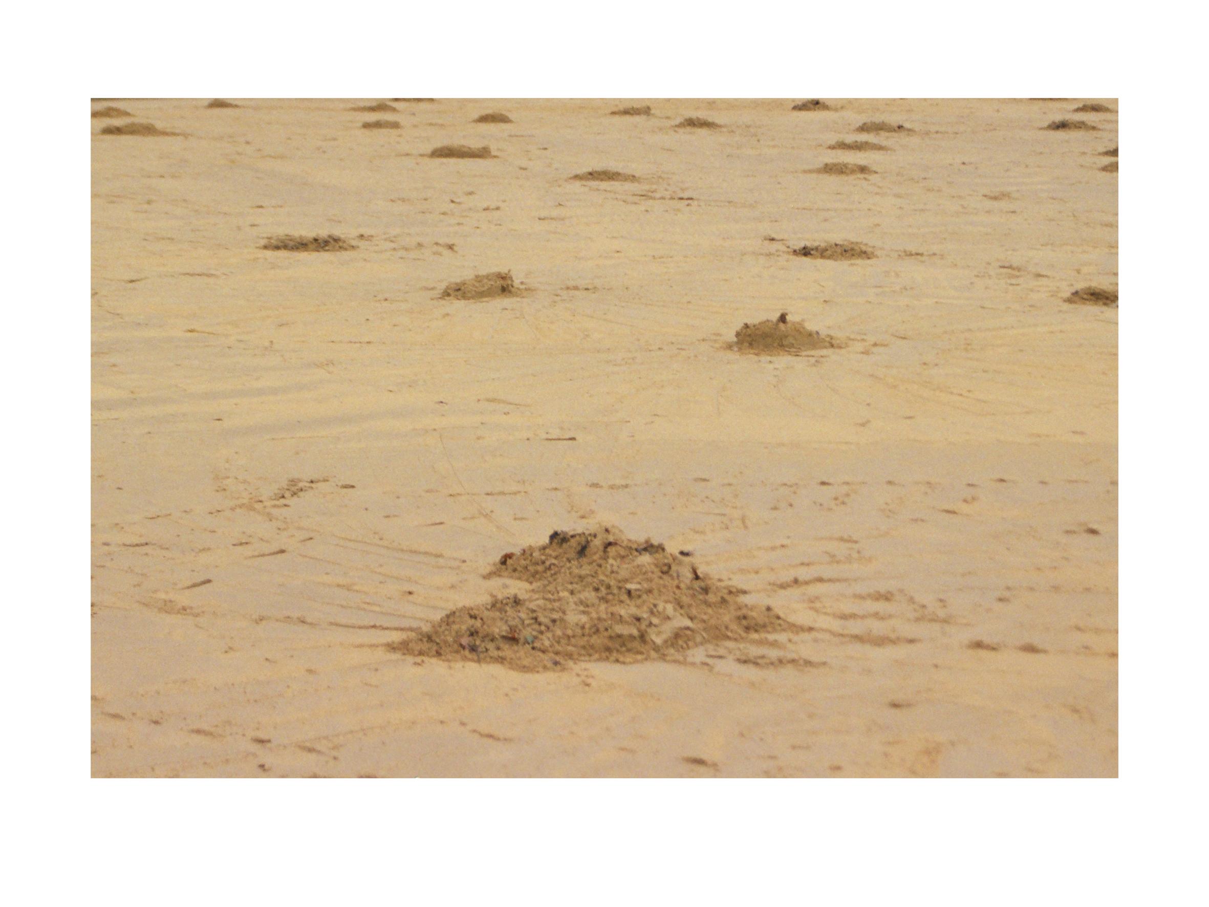 bajo la arena 15