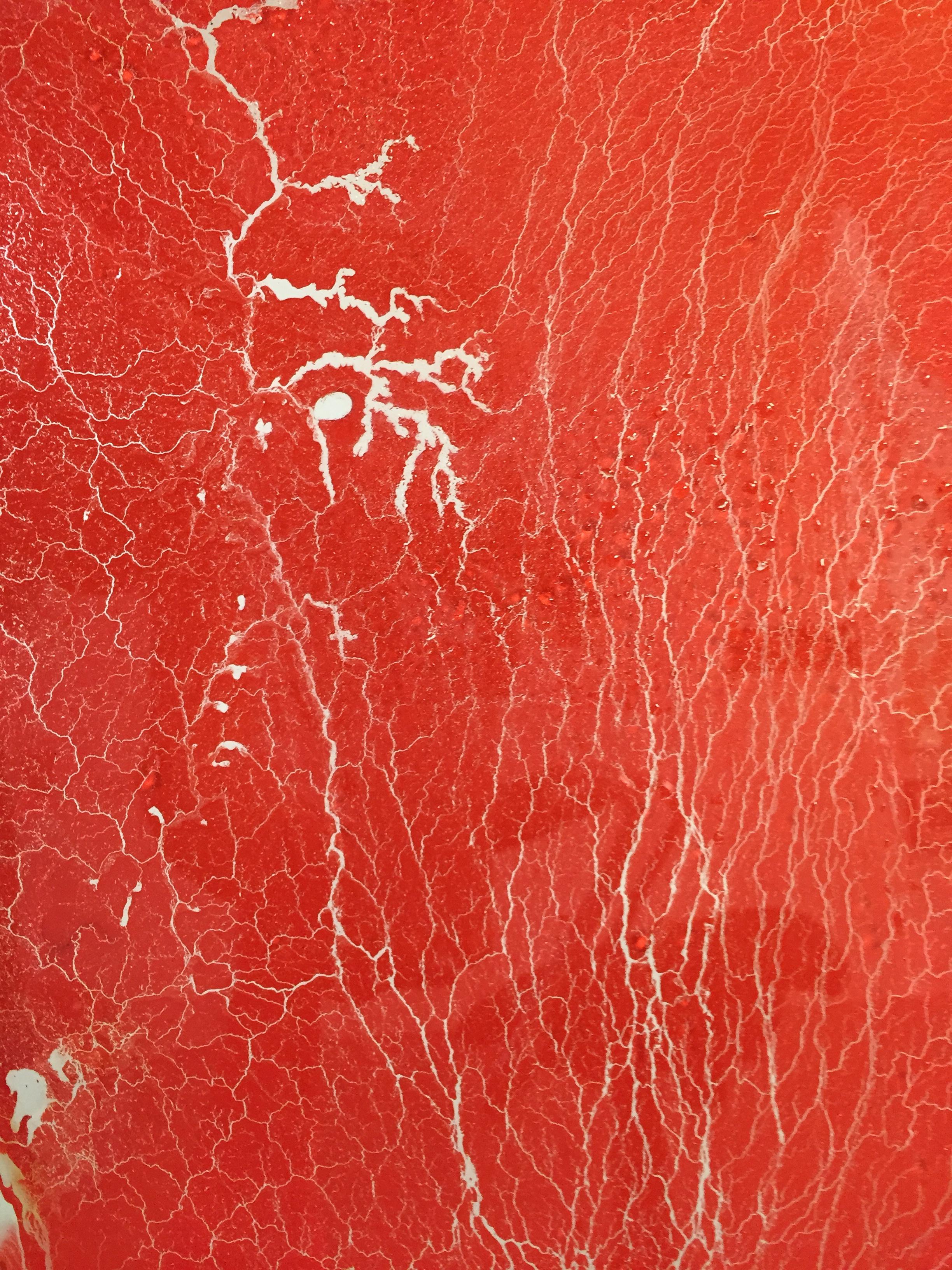 Pintura microscópica.