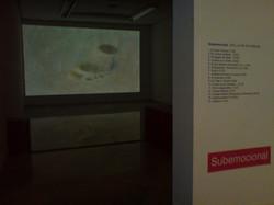 Subemocional_vídeo_projection_room