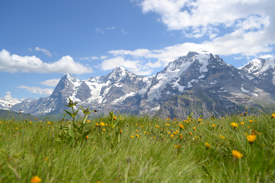 Jungfrau & Eiger