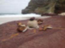 Dias-Beach-2.jpeg