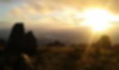 Screen Shot 2020-02-16 at 10.02.08 PM.pn