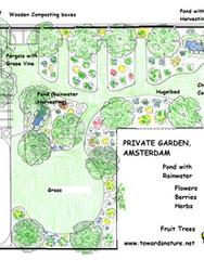 Verwaarloosd tot ontworpen Voedselbostuin