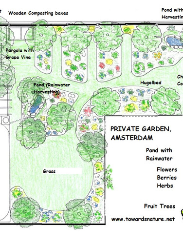 Neglected to Designed FoodForest Garden