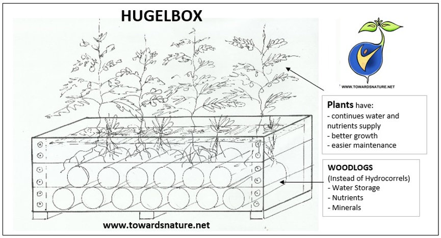 Hugelbox